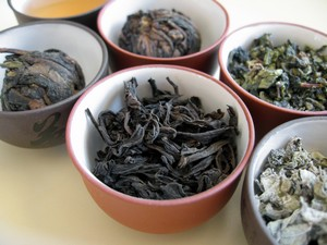 green tea versus oolong tea